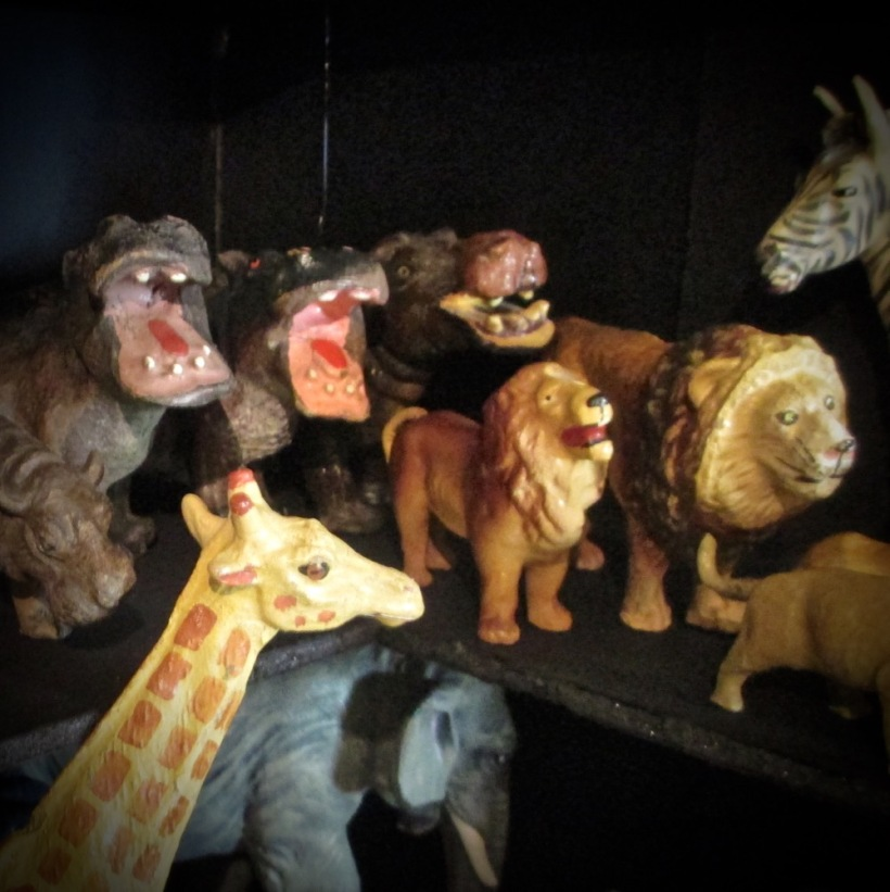Giraffe, yawning hippos, and lions