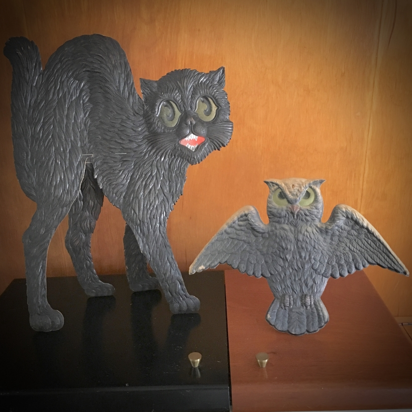 Black Cat Owl Germany
